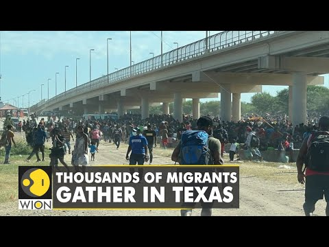 US immigration: Thousands gather under a bridge at US-Mexico border| Latest English News | WION News