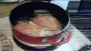 Murgh Kari (indian Chicken Curry)