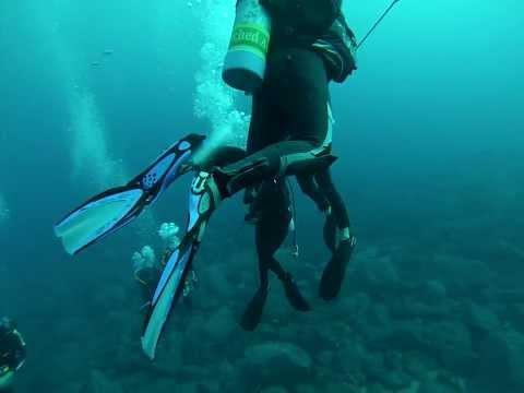 Deep Dive 30m