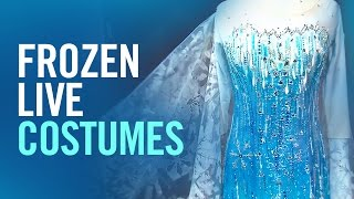 """Elsa and Anna's """"Frozen - Live at the Hyperion"""" Costumes"""
