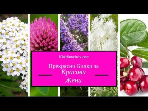 Прекрасни билки за красиви жени
