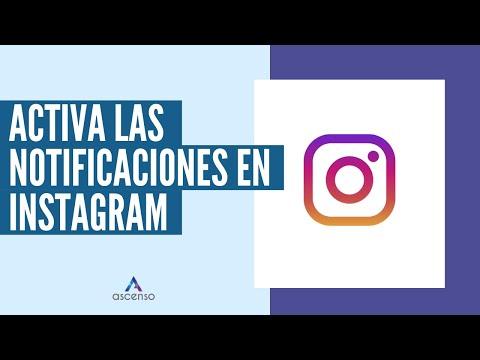 ¿Cómo activar notificaciones de una persona en Instagram?