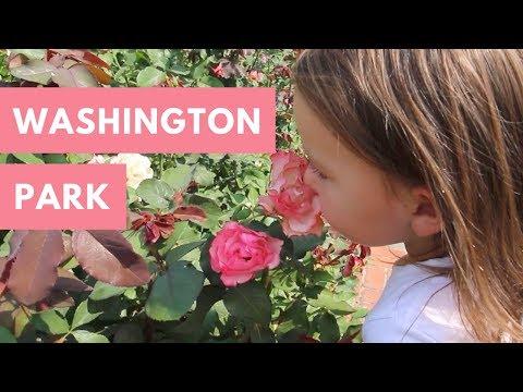 Portland International Rose Test Garden & World Forestry Center - Washington Park