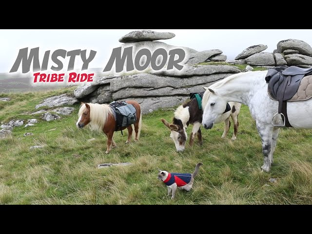 Misty Moorland Tribe Ride
