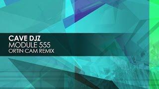 Cave DJz - Module 555 (Ortin Cam Remix)