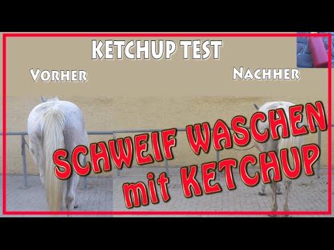 Schweif waschen mit KETCHUP / Schimmel Pferd Test Review