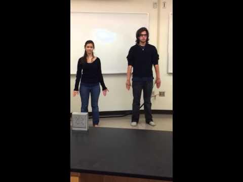 A&P 1 / Lab 2: Anatomical Movements