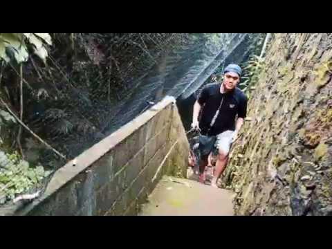 Spot mancing ikan nila di kali jogja - YouTube