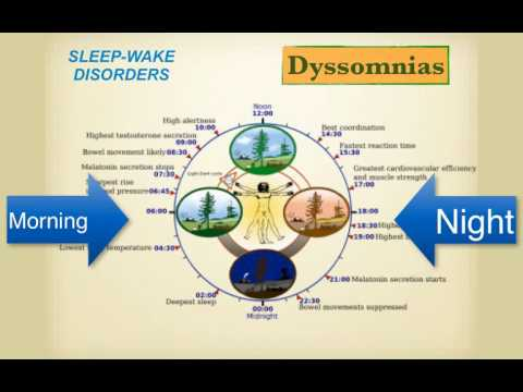 SteveMillers Abnormal Psychology Sleep Wake Disorders F16