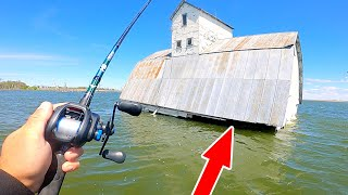 Catching My BIGGEST FISH from Under the FLOODED Barn!! (Surprising)