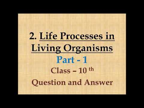 Science 2 life processes in living organisms part 1 youtube science 2 life processes in living organisms part 1 urtaz Image collections