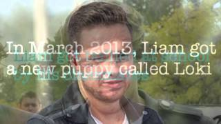 20 Liam Payne Facts