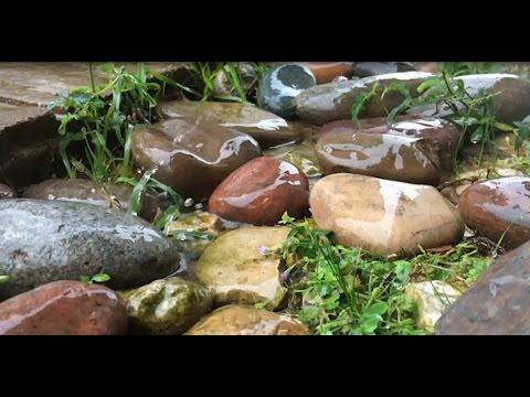 Шум дождя для сна. Релаксация - звук дождя. Звуки природы для сна. HD video - 2 часа