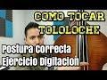 COMO TOCAR EL TOLOLOCHE 2 ( CONTRABAJO ) CLASES GRATIS - LEO MART