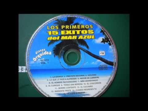 Descargar Video Conjunto Mar Azul