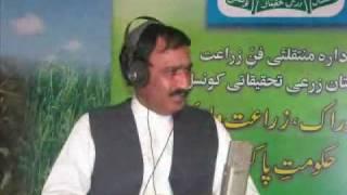 Gram(channa) cultivation technology Pakistan Dr. Ashraf Sahibzada