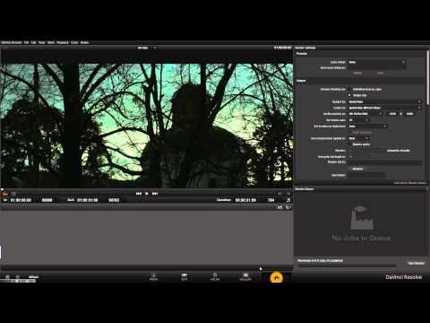 Видеоурок: первая работа в DaVinci Resolve и сопряжение с Adobe Premiere