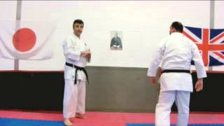 Tekki Nidan Bunkai Strategies Newsletter 2013  week 31