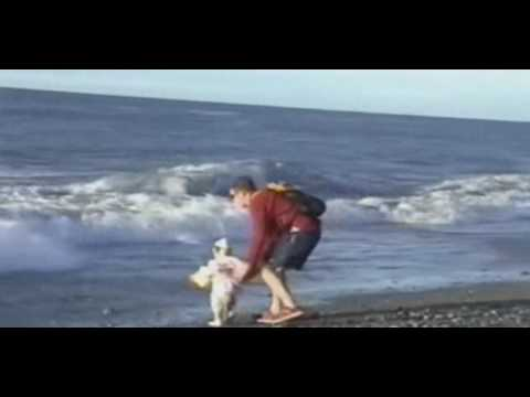 Fathers superhuman reflexes faster