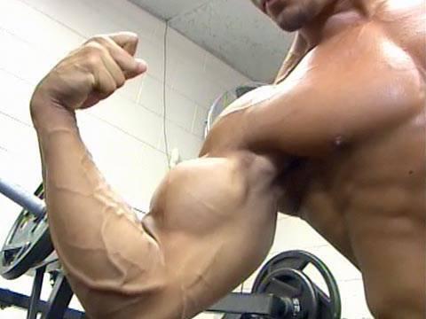 Teen bodybuilders train in New Mexico
