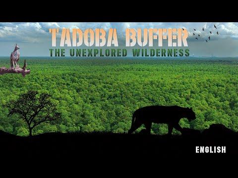 Tadoba Andhari Tiger Reserve - Buffer Zone (English Film)