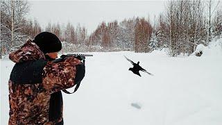 Охота на тетерева на лунках 2021 Black grouse hunting