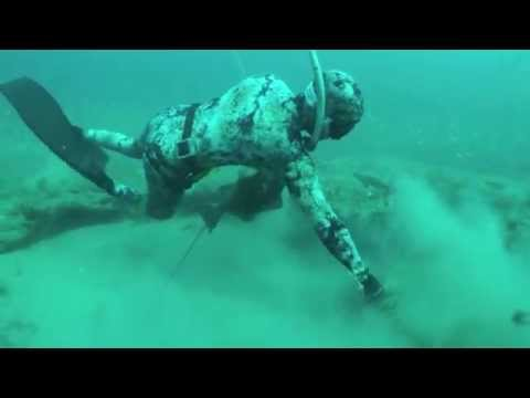 World Record Grouper And Giant Lobsters - Spearfishing With Cameron Kirkconnell