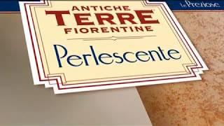 Perlescente Candis (Перлаченти). Видео урок по нанесению декоративной краски