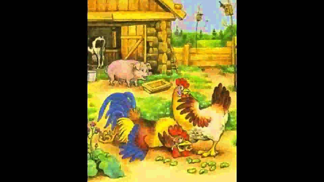 картинки сказка петушок и бобовое зёрнышко