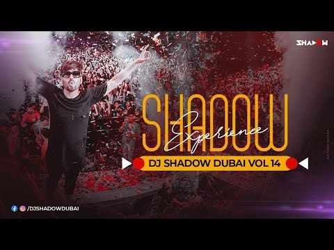 Year End Party Mix 2020 | Shadow Experience Vol 14 | DJ Shadow Dubai Nonstop |  Mp3 Download