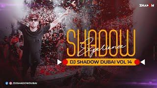 Shadow Experience Vol 14 | DJ Shadow Dubai Nonstop | Party Mix 2020