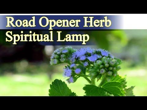 Herbal Magic  using [Road opener-Abre camino] DIY