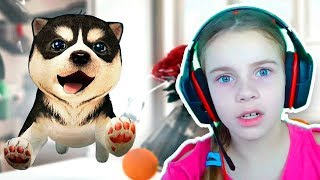 СИМУЛЯТОР СОБАКИ Игра - Забавный щенок и собачки Видео для детей