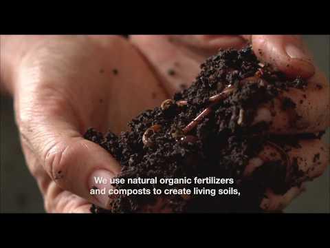 Second Nature Organics - Organic Farm in Brisbane