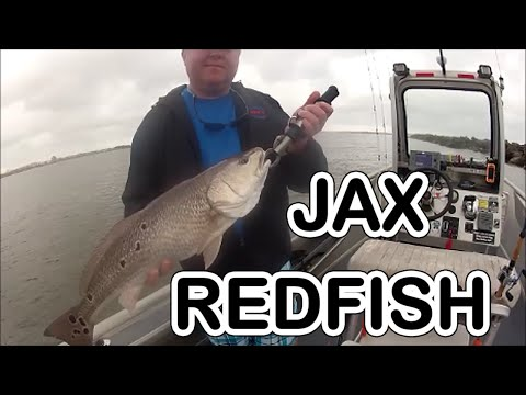 JETTY FISHING:  Jacksonville Fishing Video's