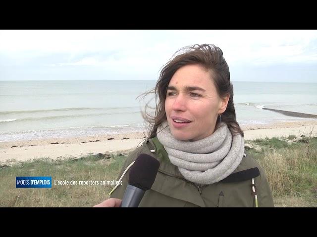 IFFCAM :  l'école des reporters animaliers