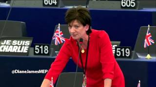 Sketchy Catch-the-Eye Rules at the European Parliament - Diane James MEP