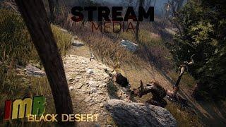 видео Black Desert - Что нам ждать от Медии