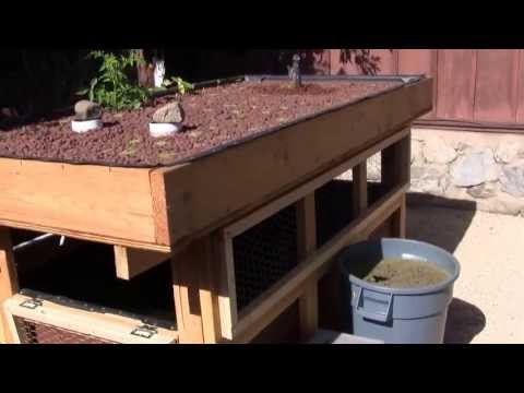Aquaponics two-tiered back yard gardening and fish farming system made of wood.