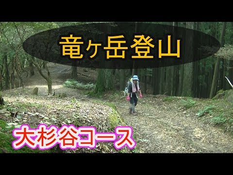 【竜ヶ岳登山】大杉谷コ-ス。京都 竜ヶ岳(標高921m)登頂記。
