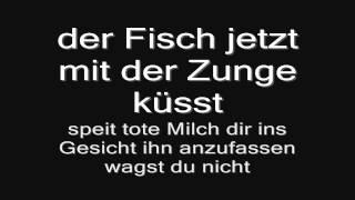 Rammstein - Laichzeit (lyrics) HD