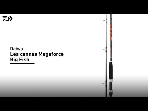 Daiwa | Canne Megaforce Big Fish