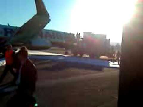 ryanair-birdstrike-crash-italy-boeing-737-engines-broken