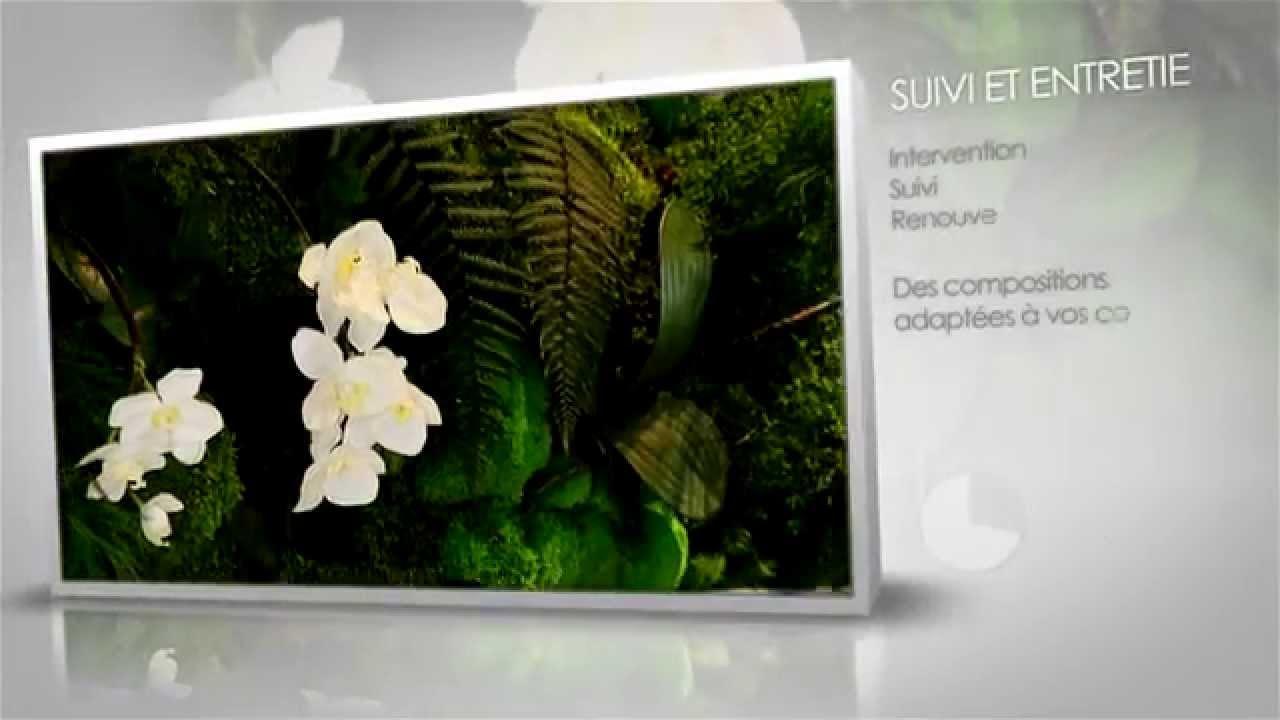d coration v g tal int rieur murs tableaux plantes. Black Bedroom Furniture Sets. Home Design Ideas