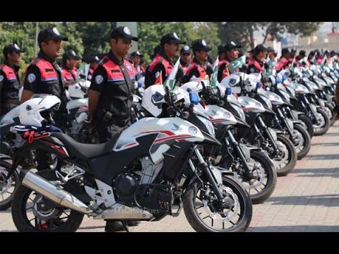 Dolphin force successful in Lahore, says Punjab Law Minister Rana Sanaullah