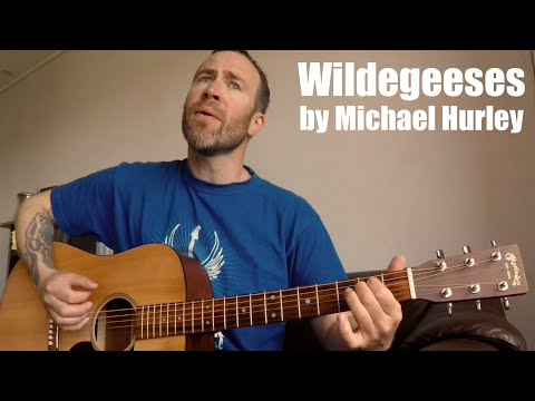Wildegeeses By Michael Hurley - Cover