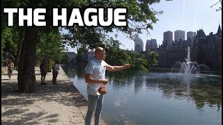 hague travel guide