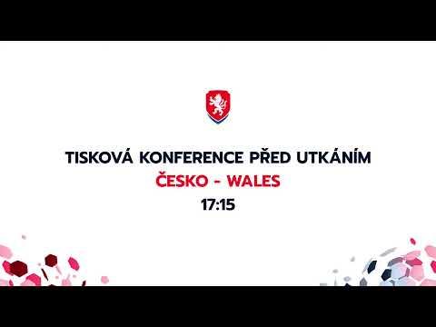 Tisková konference A týmu před utkáním Česko - Wales