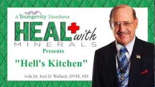 Strategic Health Plan  Hell's Kitchen by Dr Joel Wallach