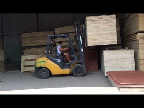 Vietnam plywood  Supplier in Hanoi - Contact  +84 965609153 [Hgwoods.com]
